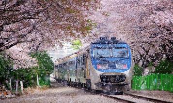 9 самых удивительных железных дорог в мире